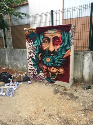des-street-artistes-donnent-des-couleurs-aux-armoires-de-fibre-optique-a-evry-image-6