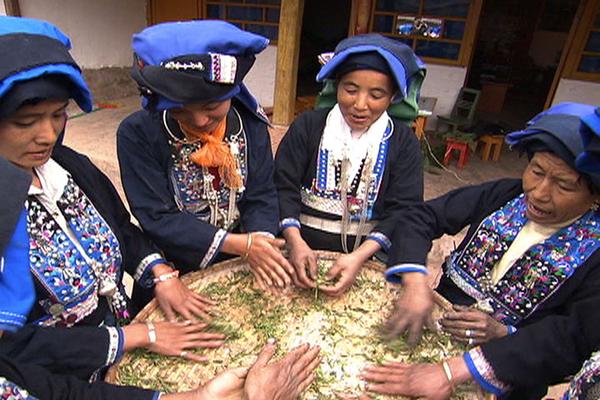 image de couverture de Cycle de films documentaires La route du thé….Ou les aventures millénaires d'une petite feuille aux mille vertus