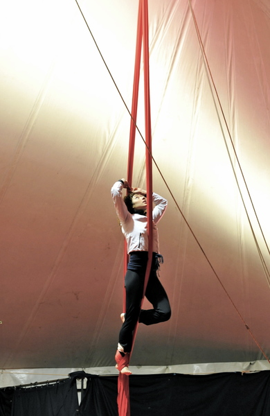 image de couverture de Atelier d'initiation aux arts du cirque (Adulte en piste)