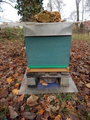 miel-de-tigery-le-gout-du-plaisir-image-4