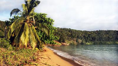 image de couverture de Cap monde présente : Océan Indien, à l'ombre des manguiers