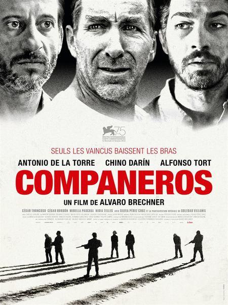 Companeros affiche